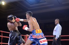 INDONESIAN BOXING WORLD Stock Images