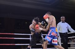 INDONESIAN BOXING WORLD Royalty Free Stock Images