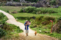 Indonesian boy carries big basket with laundry on the road in Tana Toraja Royalty Free Stock Image