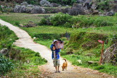 Indonesian boy carries big basket with laundry on the road in Tana Toraja Royalty Free Stock Photo
