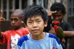 The Indonesian boy with a parrot. Royalty Free Stock Photography