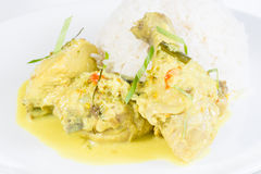 Indonesian chicken cuisine Opor Ayam Stock Image