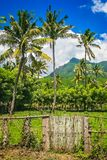 Indonesian Countryside on Sumbava Island stock photography