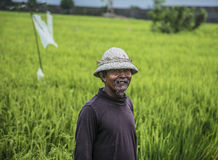 Indonesian Farmer royalty free stock images