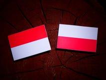 Indonesian flag with Polish flag on a tree stump isolated. Indonesian flag with Polish flag on a tree stump vector illustration