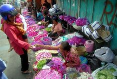 INDONESIAN FLOWER VENDOR Royalty Free Stock Photos