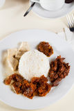 Indonesian Food Gudeg on white plate Stock Photos