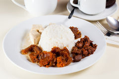 Indonesian Food Gudeg on white plate Royalty Free Stock Images