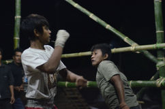 INDONESIAN FREE FIGHT Stock Photo