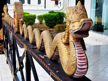 Indonesian gold snake in Sultan Royal Palace Stock Photography