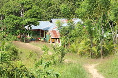 Indonesian house in forest. Mountains neer by Sorong (Papua Barat, Indonesia Stock Image