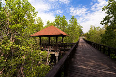 Indonesian landscape with walkway Stock Photos