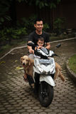 Indonesian man on motorbike with child and dog, Medan, Indonesia Stock Photos
