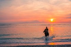 An indonesian man riding in the water at sunset. An indonesian man rides a horse towards the beach with the red setting sun over the volcano of Bali in his back stock images
