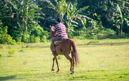 Indonesian men ride his horse Royalty Free Stock Photo