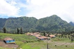 Indonesian Mountains Village, Near Volcano Mont Bromo Royalty Free Stock Photo