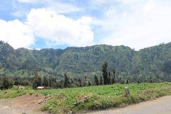 Indonesian Mountains Village, Near Volcano Mont Bromo Stock Photos