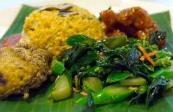 Indonesian Nasi Padang Stock Images