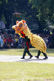 Indonesian National Armed Forces are doing a lion dance attracti Royalty Free Stock Photos