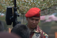 Indonesian soldier Royalty Free Stock Photos