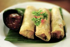 Indonesian spring roll. Indonesian traditional cuisine fried springroll Stock Photos