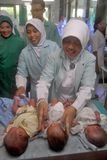 INDONESIAN TRIPLETS BABY Stock Image