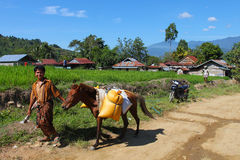 Indonesian village Royalty Free Stock Photo