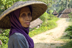 Indonesian Woman Stock Photography