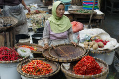 Indonesian woman selling variety of chili peppers at the market Royalty Free Stock Image
