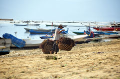 Indonesian worker at seaweeds harvest. Indonesian workers carrying seaweed on his baskets in nusa lembongan Royalty Free Stock Photos