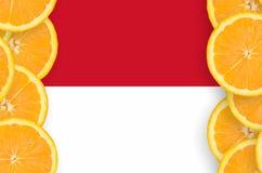 Indonesien flagga i vertikal ram för citrusfruktskivor royaltyfri foto