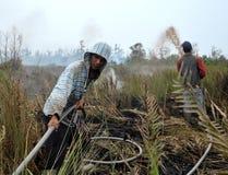 Indonesien hize Stockbilder