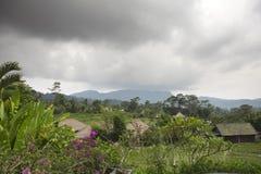 Indonesien _ Molnig dag över de tropiska natur- och risterrasserna Arkivbild
