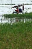 INDONESIEN SÖTVATTENS- FISKERISPÄNNING Arkivbilder