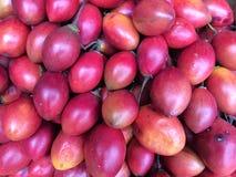 Indonesische mini rote Auberginen, zentrales Bali, Indonesien Lizenzfreies Stockfoto