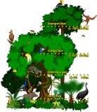 Indonesischer Dschungel des Regenwaldes überlagert Vektorillustration Lizenzfreie Stockfotos