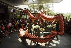 INDONESISK NATIONELL IDENTITET FÖR KINESISK NEDSTIGNING Royaltyfria Foton