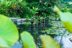 Indonezja, Bali, Styczeń 2019: Panorama Tirtagangga Taman Ujung wody pałac na Bali zdjęcia royalty free