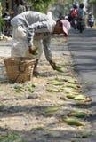 INDONEZJA inflacja LUTY Obraz Royalty Free
