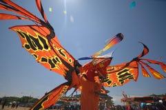 INDONEZJA kani festiwal Zdjęcie Stock
