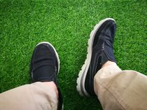 Indoor artificial grass Royalty Free Stock Image