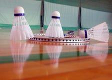 Indoor badminton Stock Image