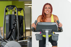 Indoor bicycle cycling in gym. Young Women spinning in the gym, exercising her legs doing cardio training Royalty Free Stock Photo