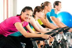 Free Indoor Bycicle Cycling In Gym Stock Photo - 16587500