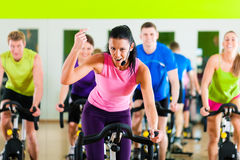 Free Indoor Bycicle Cycling In Gym Stock Photography - 20883032