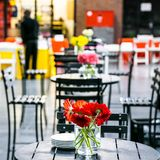 Indoor cafeteria coffee shop space with orange flowers royalty free stock photos