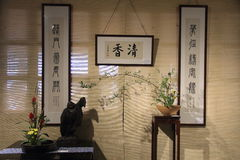 Indoor decorate Potted lotus Chinese calligraphy Royalty Free Stock Photos