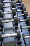 Indoor fitness equipment - free weights stacked on the rack Royalty Free Stock Images