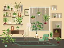 Indoor flowers into room. Urban home interior, vector living room with plants, chairs and vase. Indoor flowers into room. Urban home interior, vector royalty free illustration