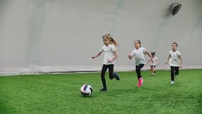 Indoor football arena. Little kids playing football. Running on the football field. Mid shot stock video footage
